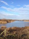Linghurst Lakes (01)