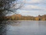 Daneshill Lakes (12)