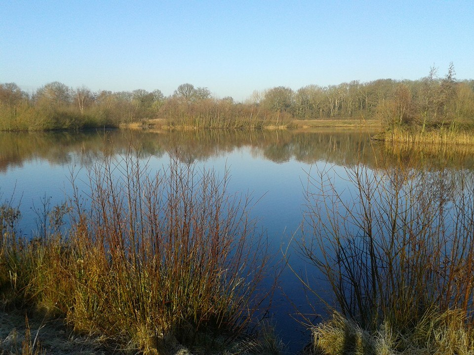 Linghurst Lakes History