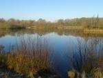 Linghurst Lakes (02)