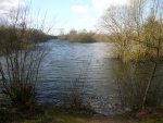 Daneshill Lakes (06)