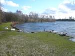 Daneshill Lakes (11)