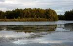 Daneshill Lakes (13)