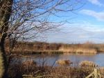 Linghurst Lakes (04)
